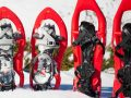 Raquetas de nieve: ¿Cuáles son las mejores del 2021?