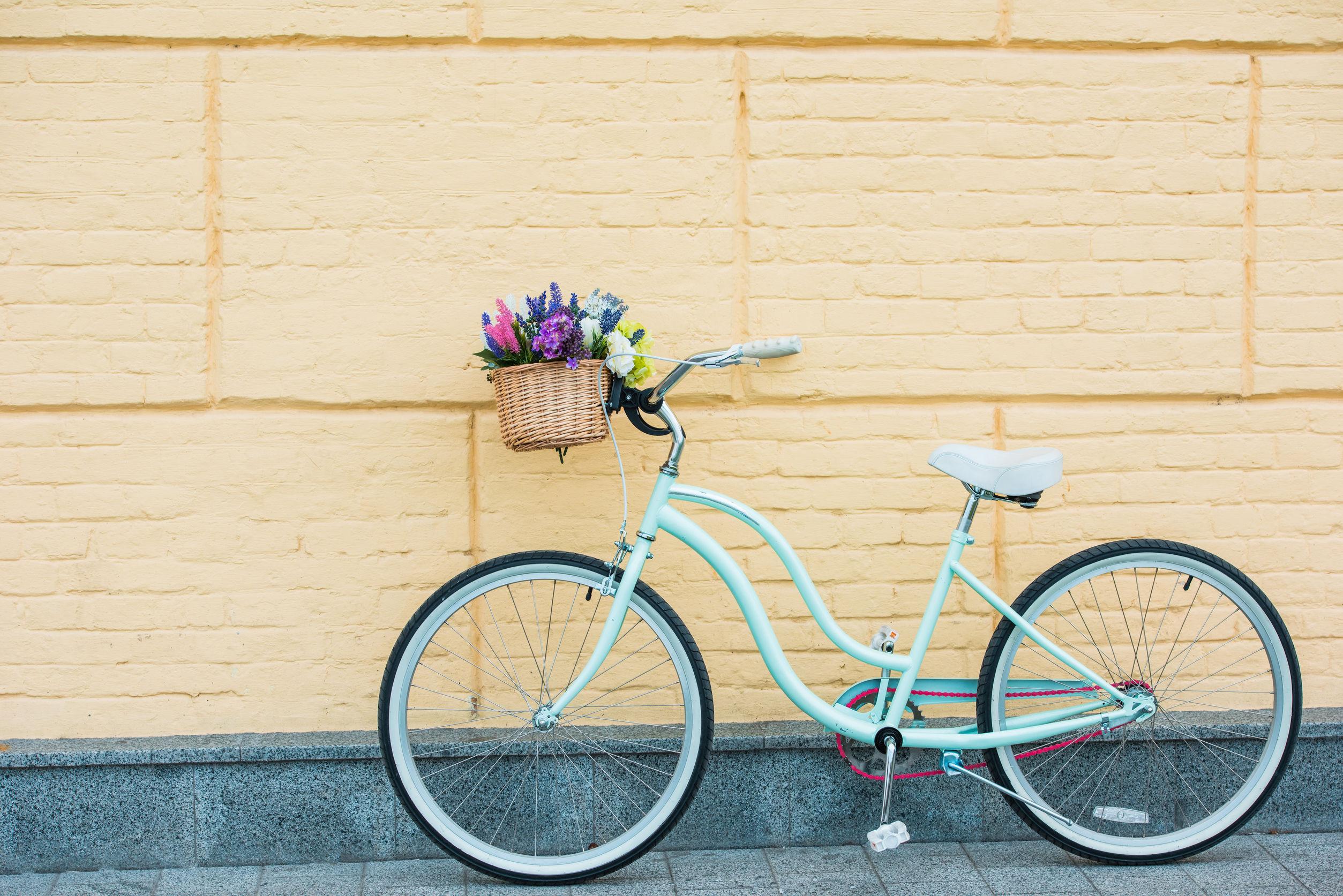 Cesta para bicicleta: ¿Cuál es la mejor del 2020?