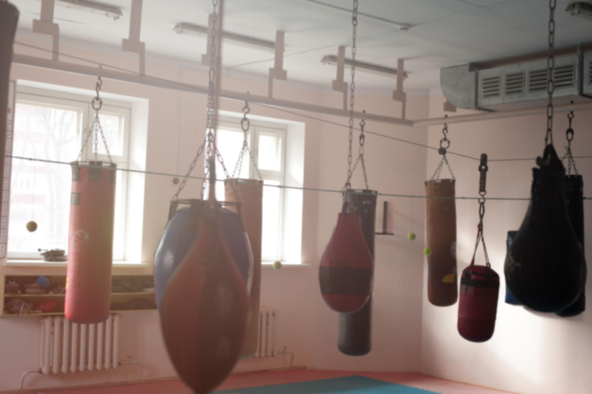 sacos de boxeo dentro de gimnasio