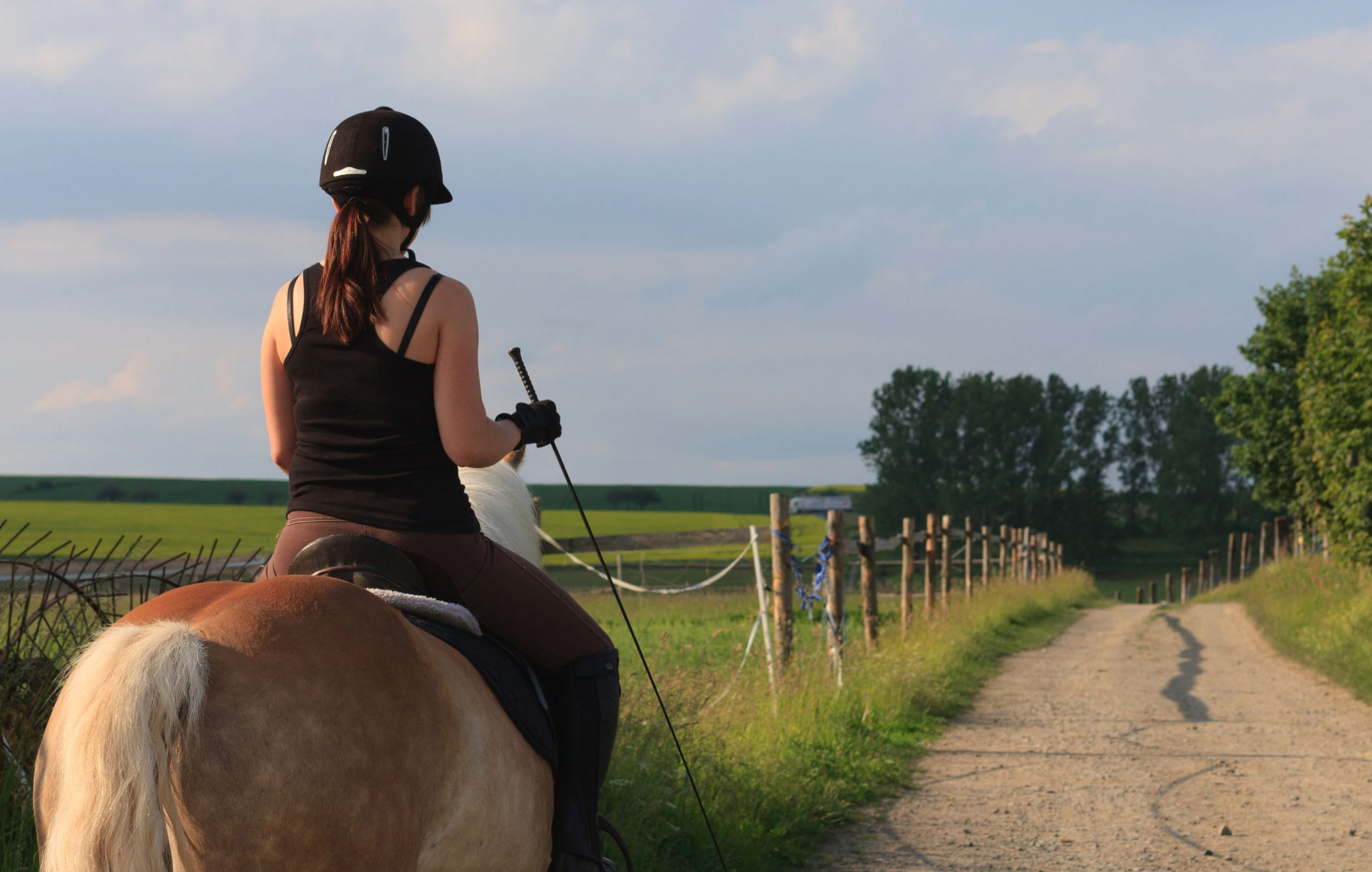 fusta de equitación