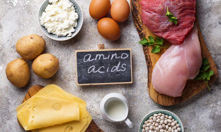 ¿Cuáles son los aminoácidos esenciales?