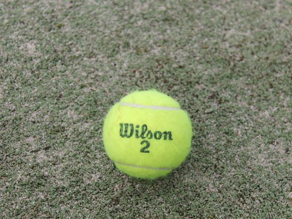 Pelotas Wilson: ¿Cuáles son las mejores del 2021?
